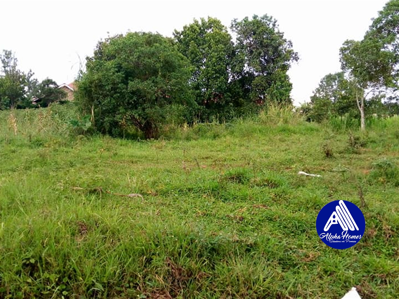 Residential Land for sale in Nsabwe Mukono