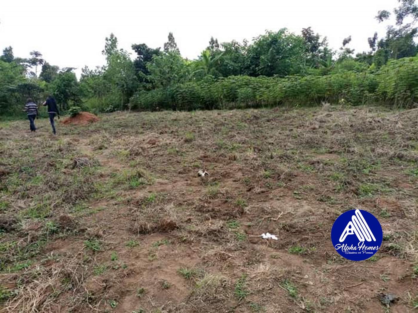 Residential Land for sale in Kasayi Mukono