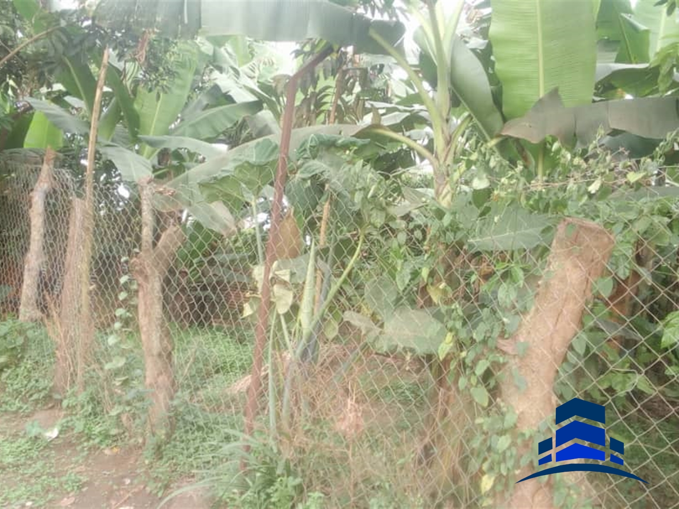Residential Land for sale in Tuula Kampala