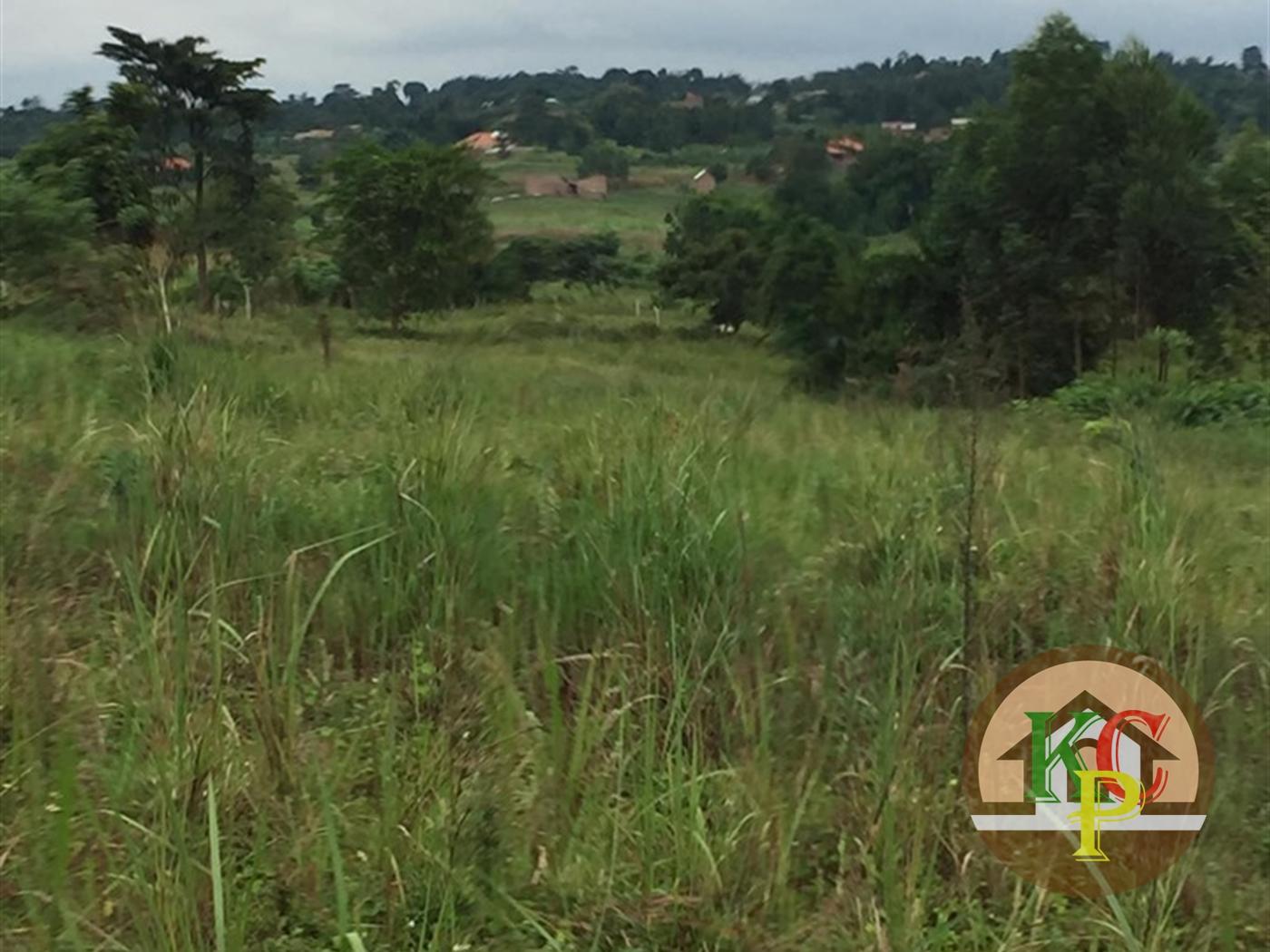 Residential Land for sale in Kiwenda Luwero