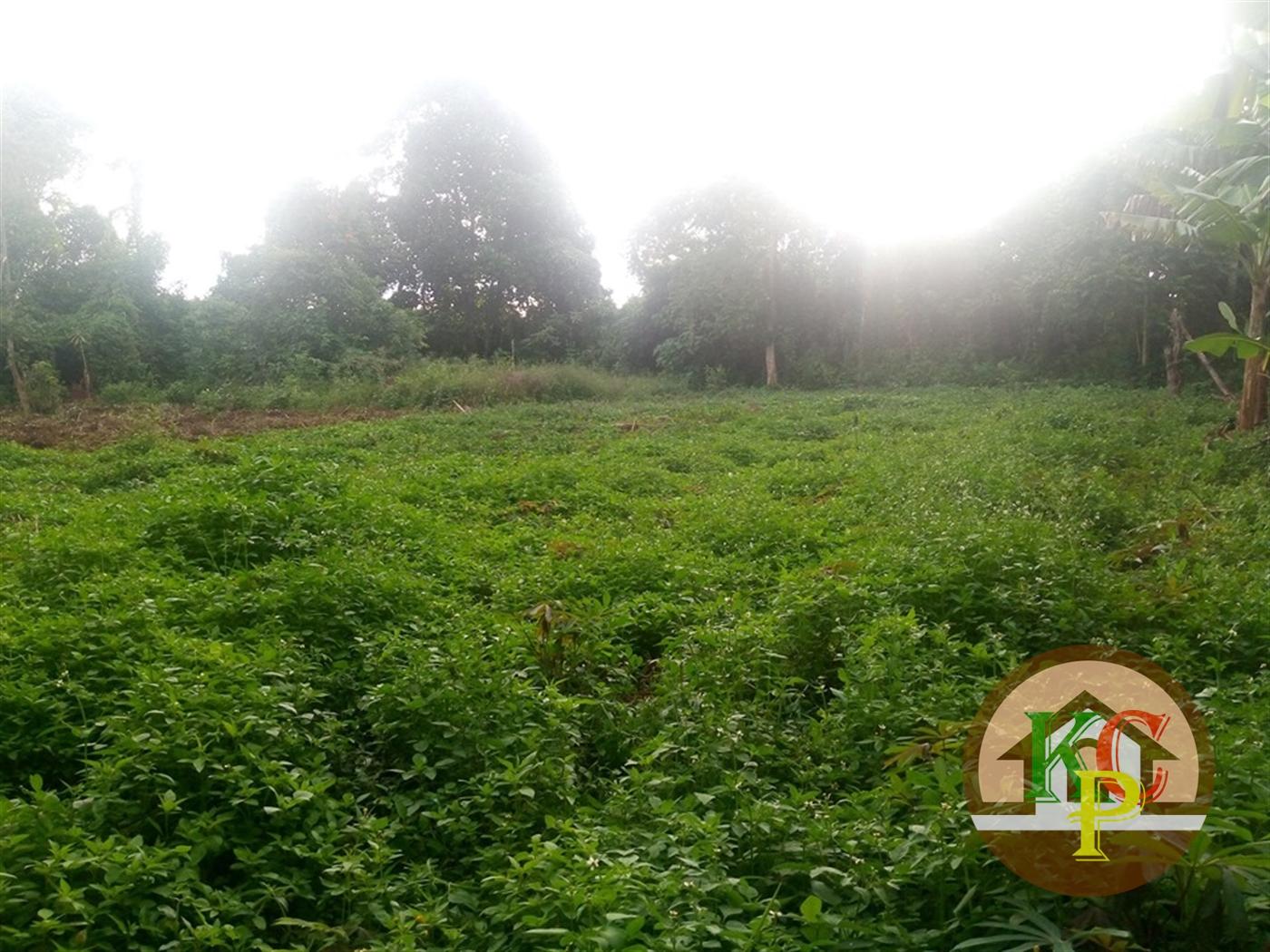 Residential Land for sale in Kisoga Mukono