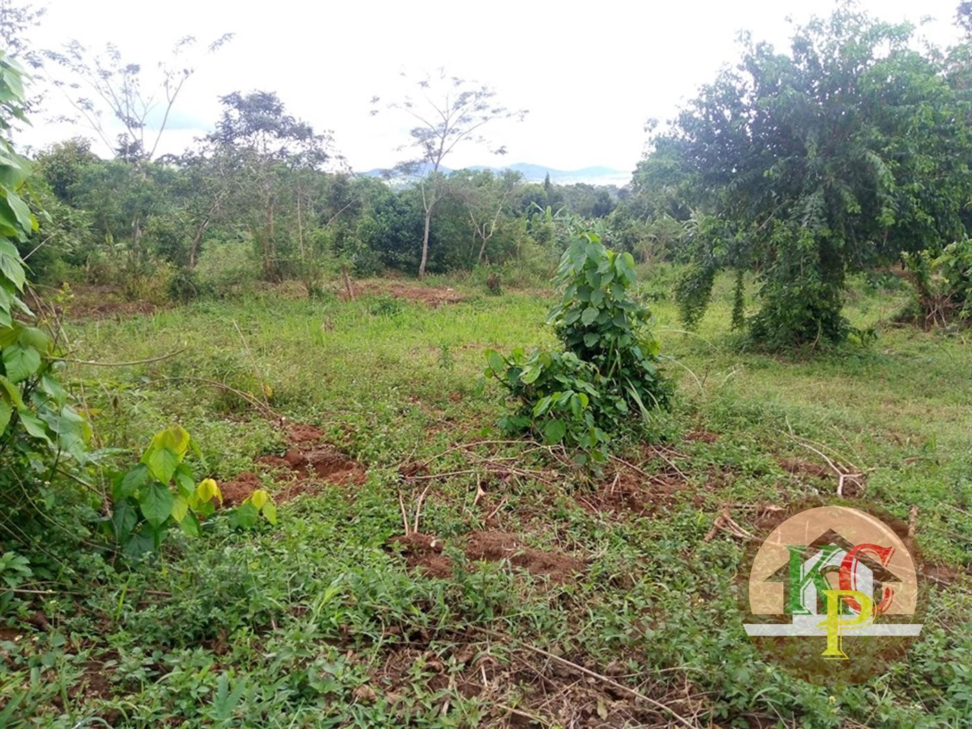 Residential Land for sale in Namayumba Mukono