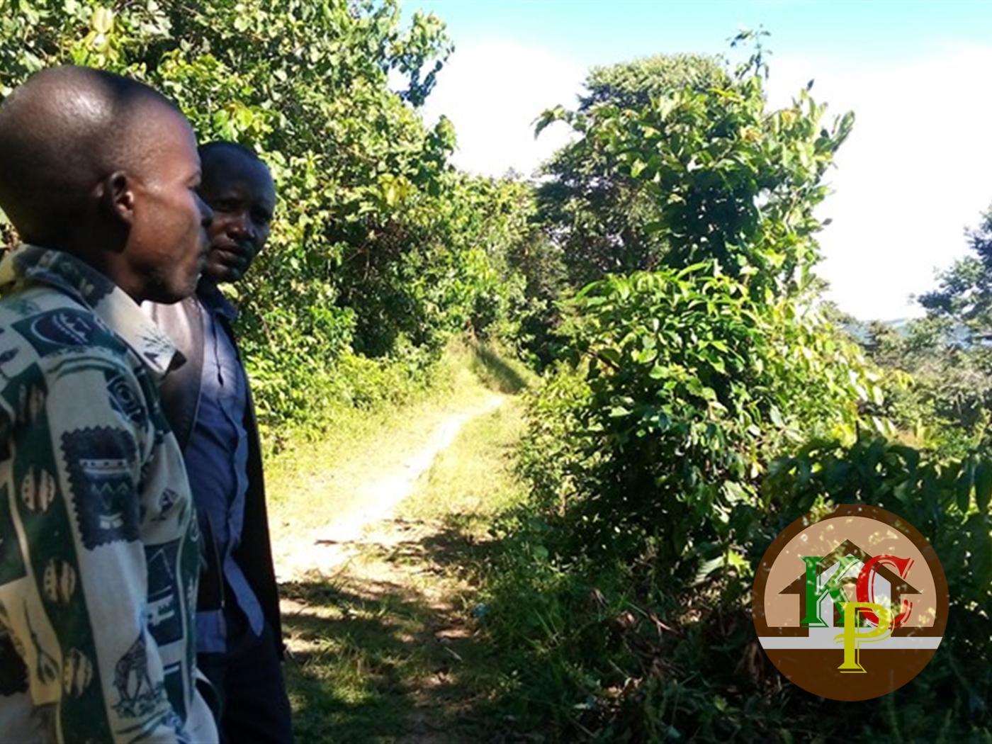 Multi Purpose Land for sale in Nkokonjeru Bukwa