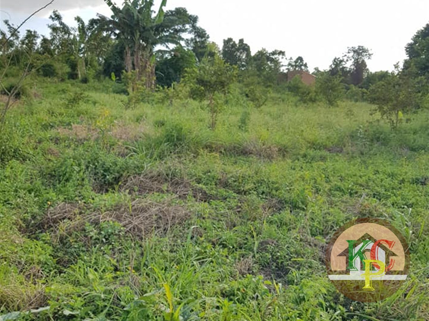 Residential Land for sale in Buwambo Wakiso