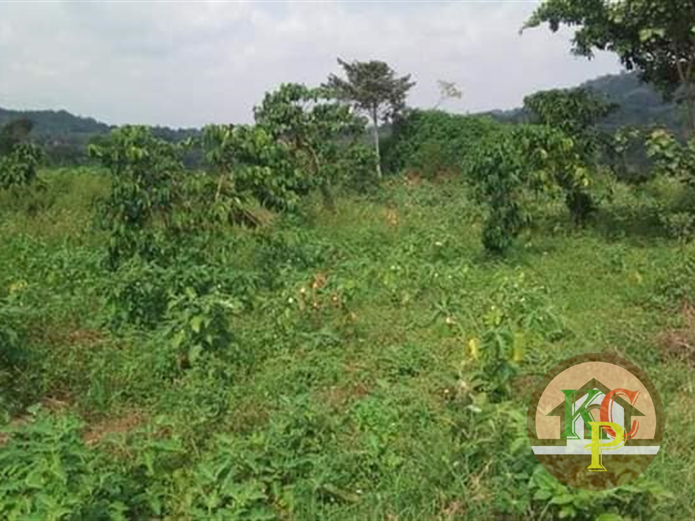 Residential Land for sale in Mpambire Mpigi