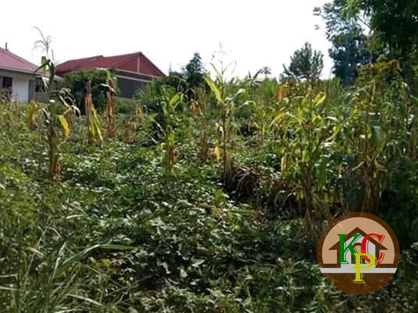 Residential Land for sale in Kiyunga Mukono
