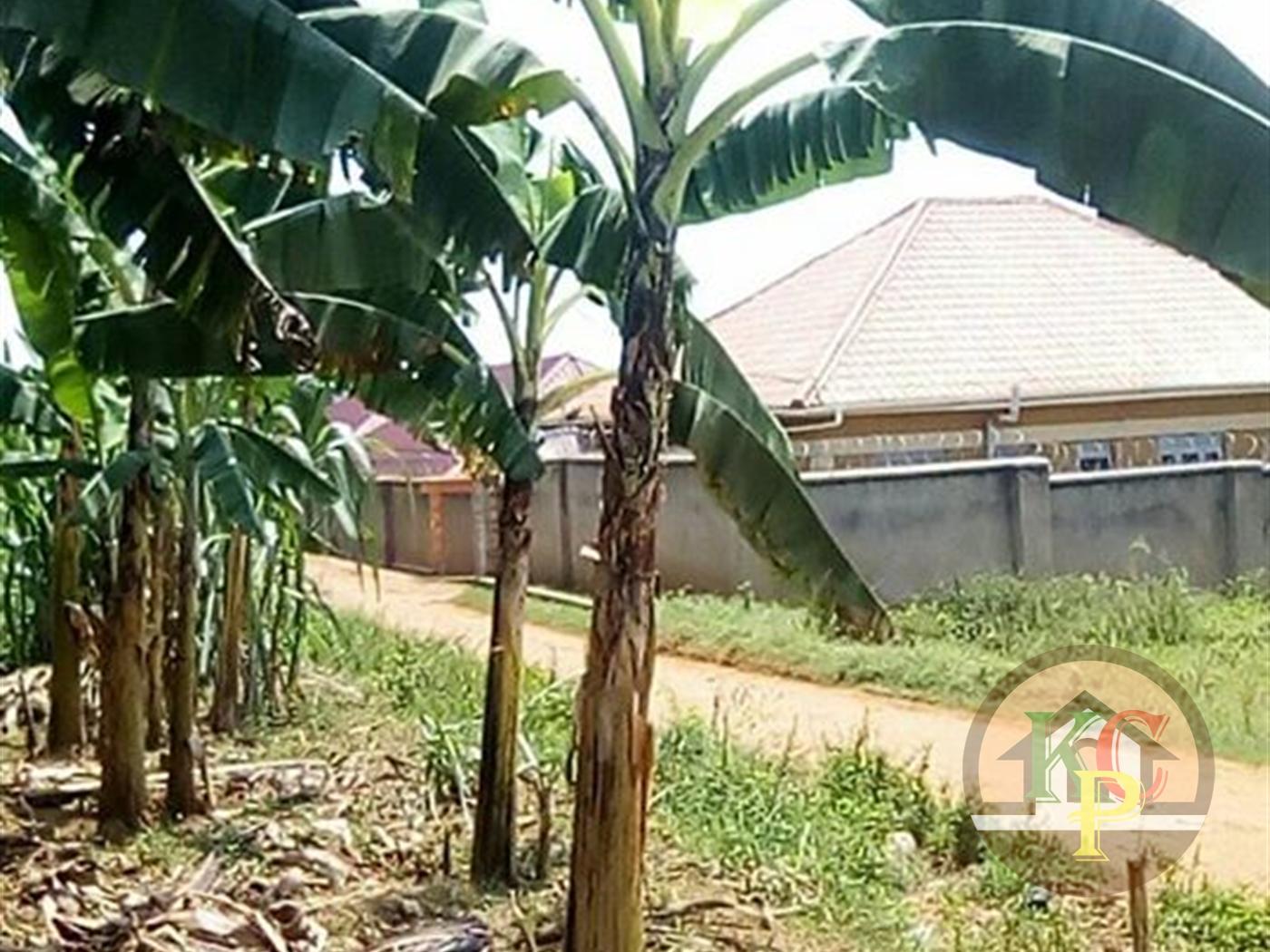 Residential Land for sale in Kirinya Wakiso