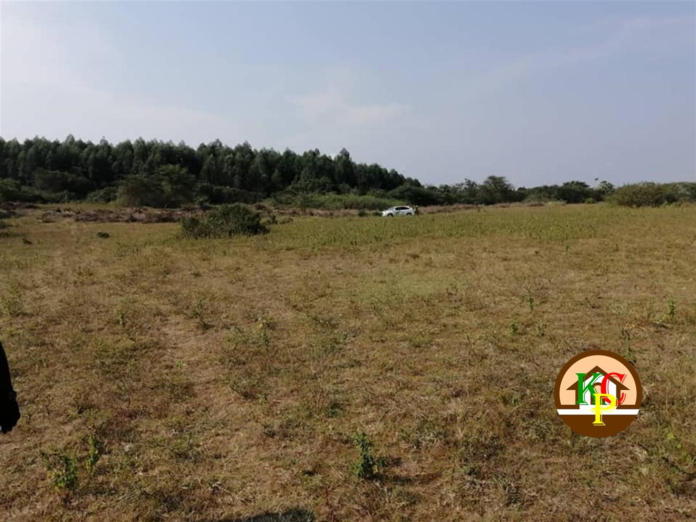 Agricultural Land for sale in Kayabwe Masaka