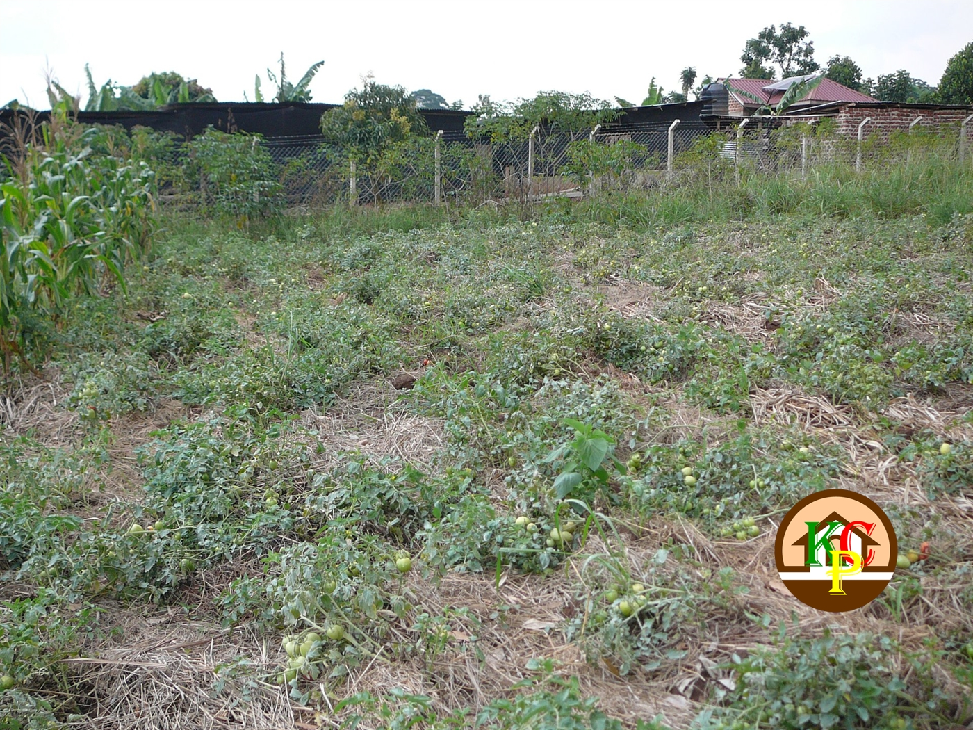 Residential Land for sale in Nakifuma Wakiso