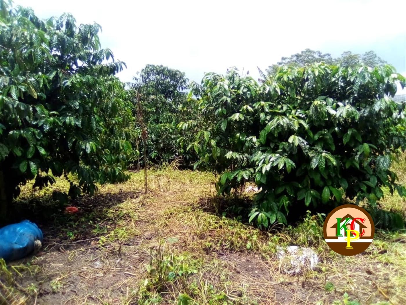 Residential Land for sale in Namaliga Mukono