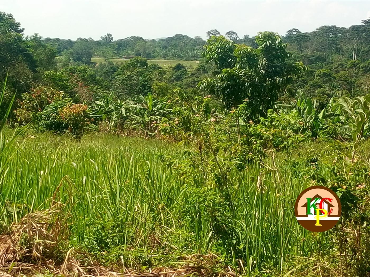 Residential Land for sale in Nkokonjeru Mukono