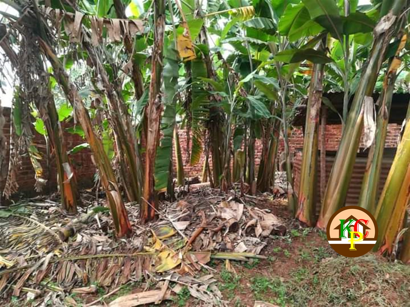 Residential Land for sale in Ucu Mukono