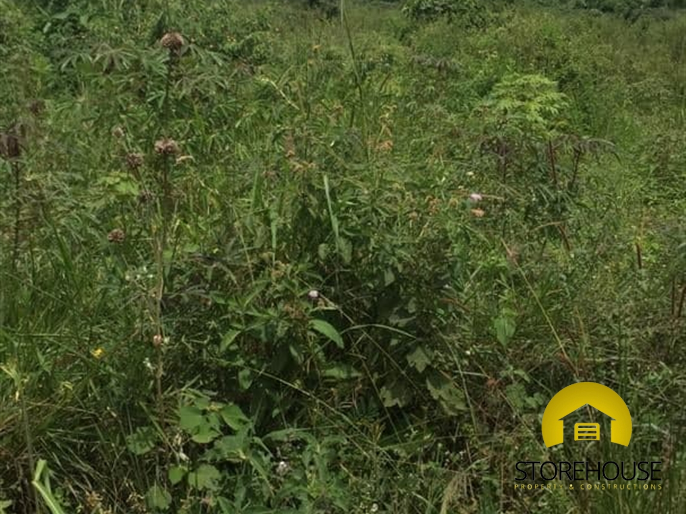 Residential Land for sale in Sisa Wakiso