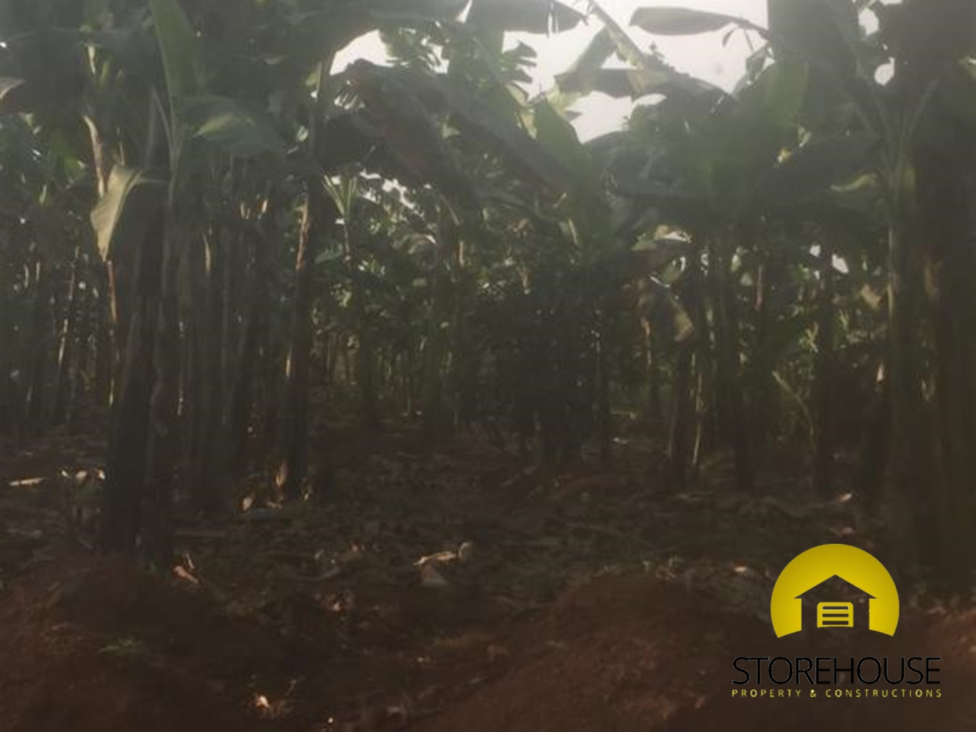 Agricultural Land for sale in Wmakombee Mukono