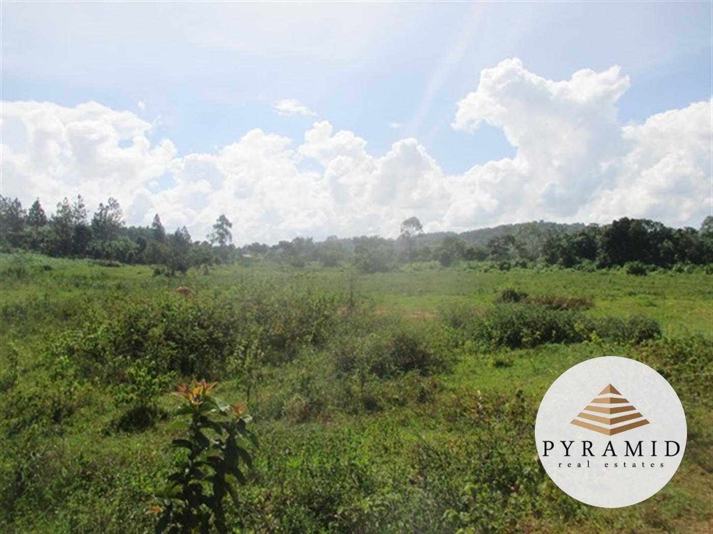 Industrial Land for sale in Lwanyonyi Mukono
