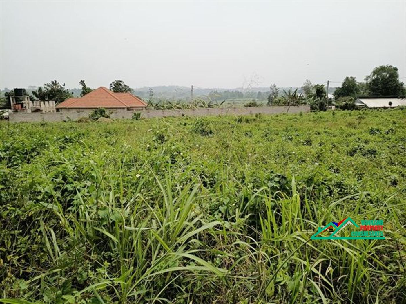 Residential Land for rent in Kira Wakiso