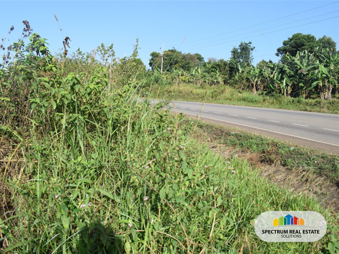 Residential Land for sale in Nswengere Mpigi