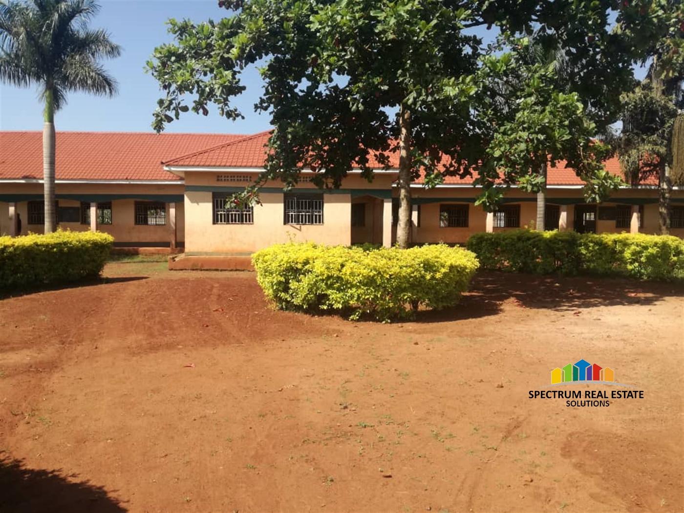 School for sale in Busia Busia