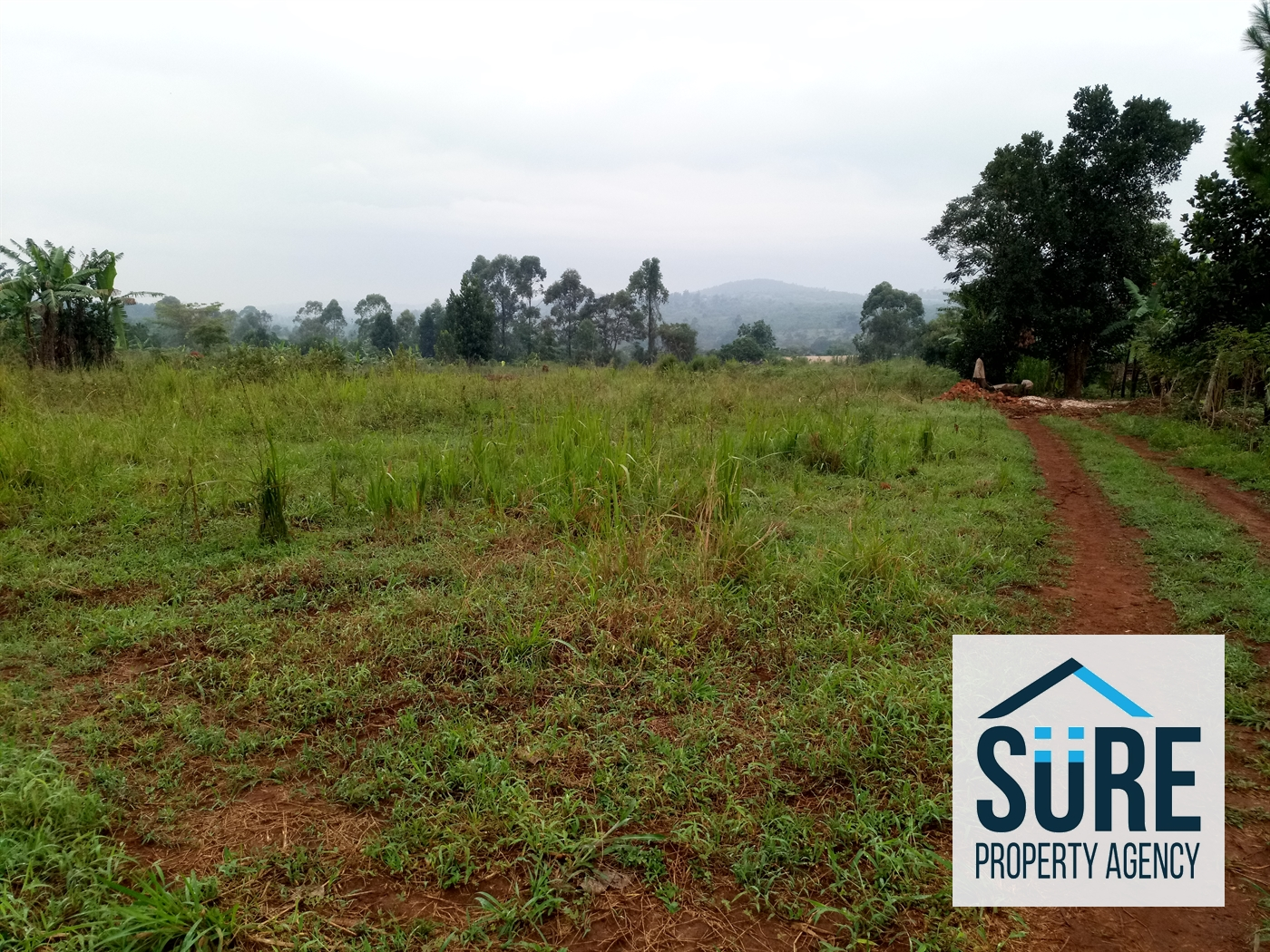 Residential Land for sale in Nakasaja Mukono