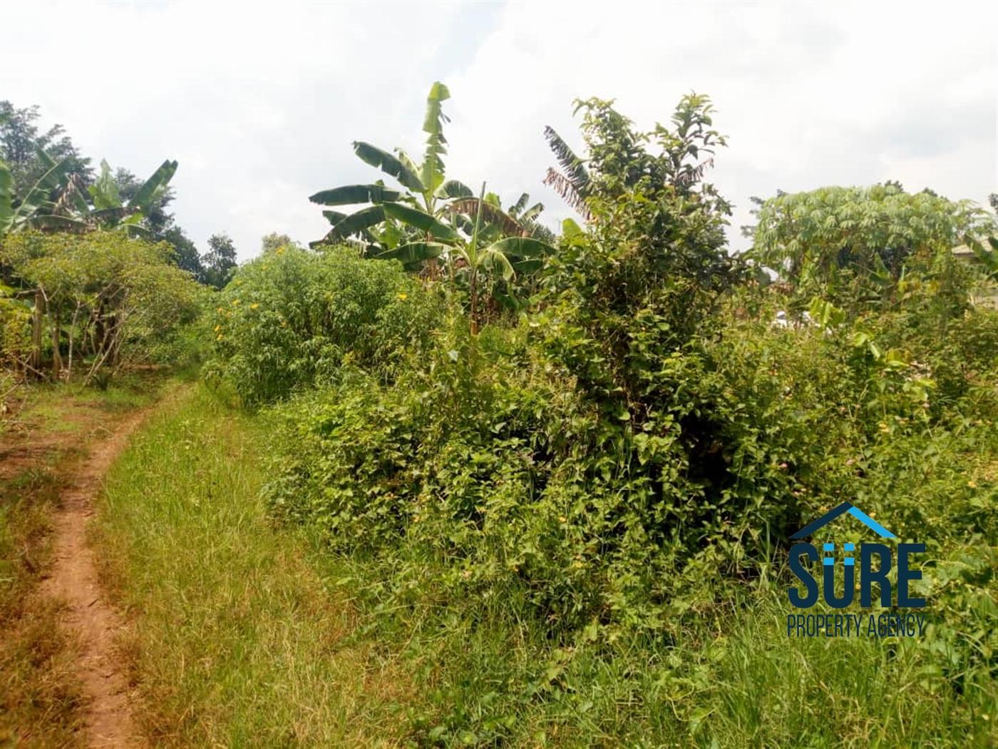 Residential Land for sale in Nakasaja Wakiso