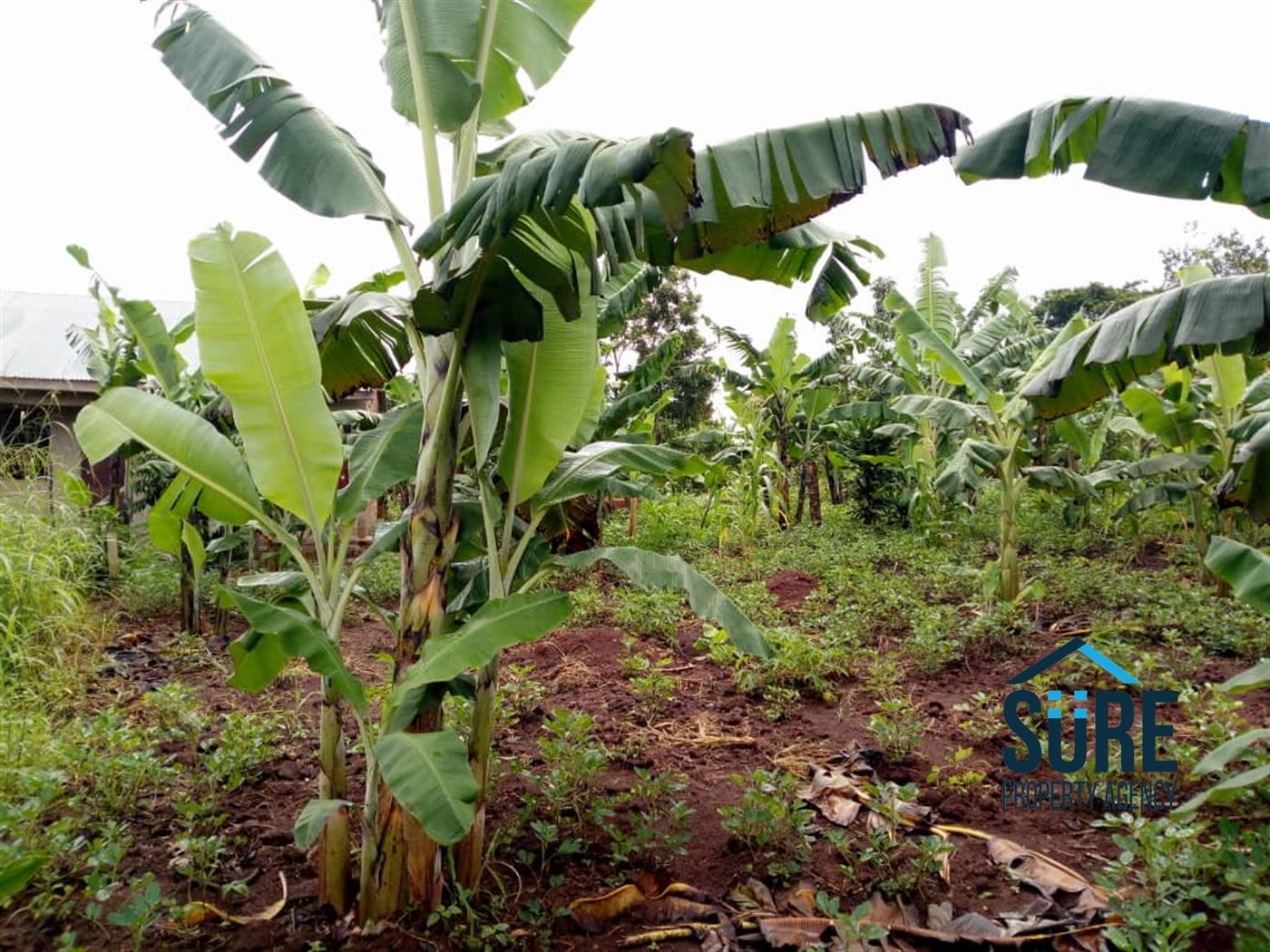 Residential Land for sale in Busiika Luwero