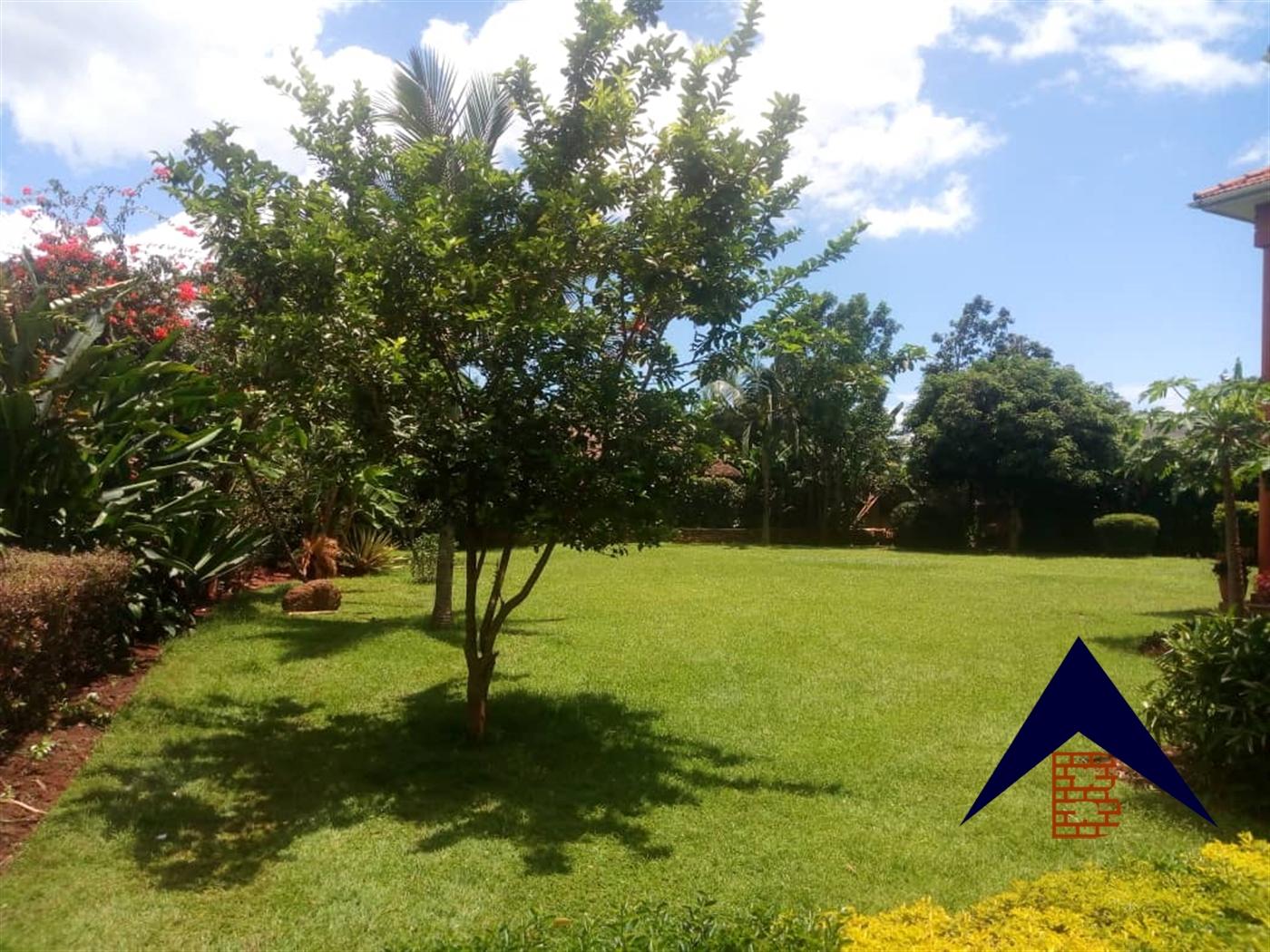 Villa for rent in Munyonyo Kampala