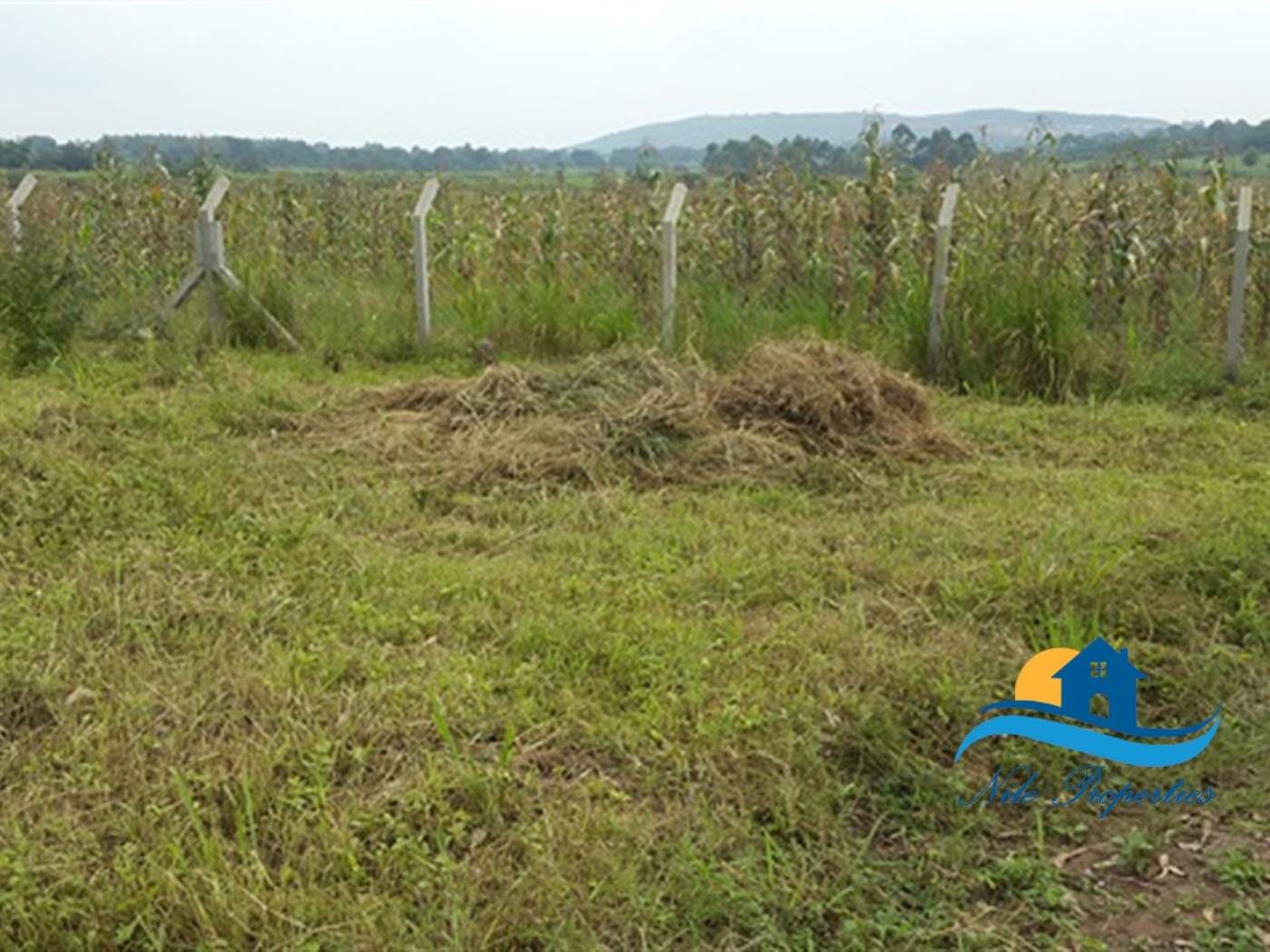 Commercial Land for sale in Jinja Jinja