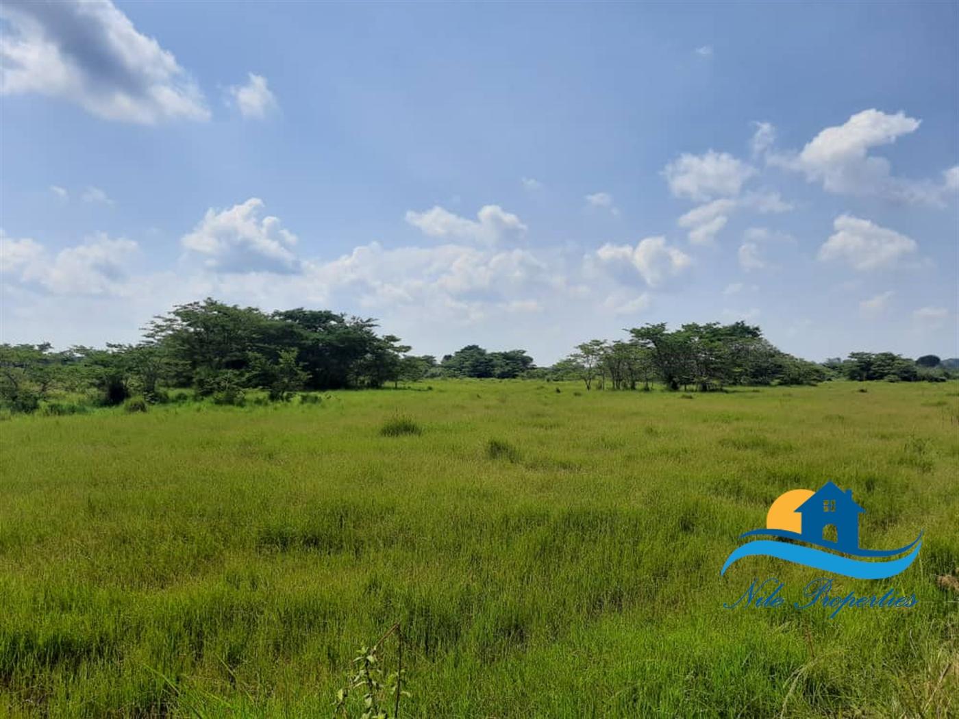 Multipurpose Land for sale in Luwero Luwero