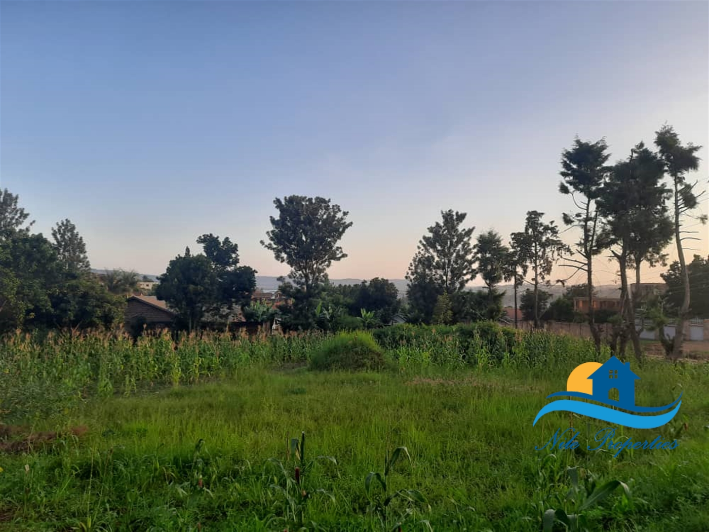 Residential Land for sale in Masese Jinja