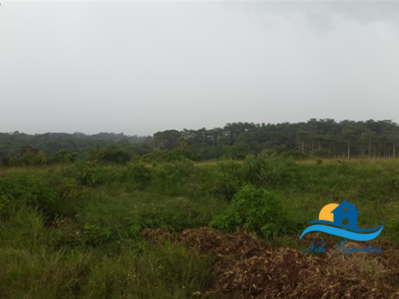 Recreational Land for sale in Kangulumira Kayunga