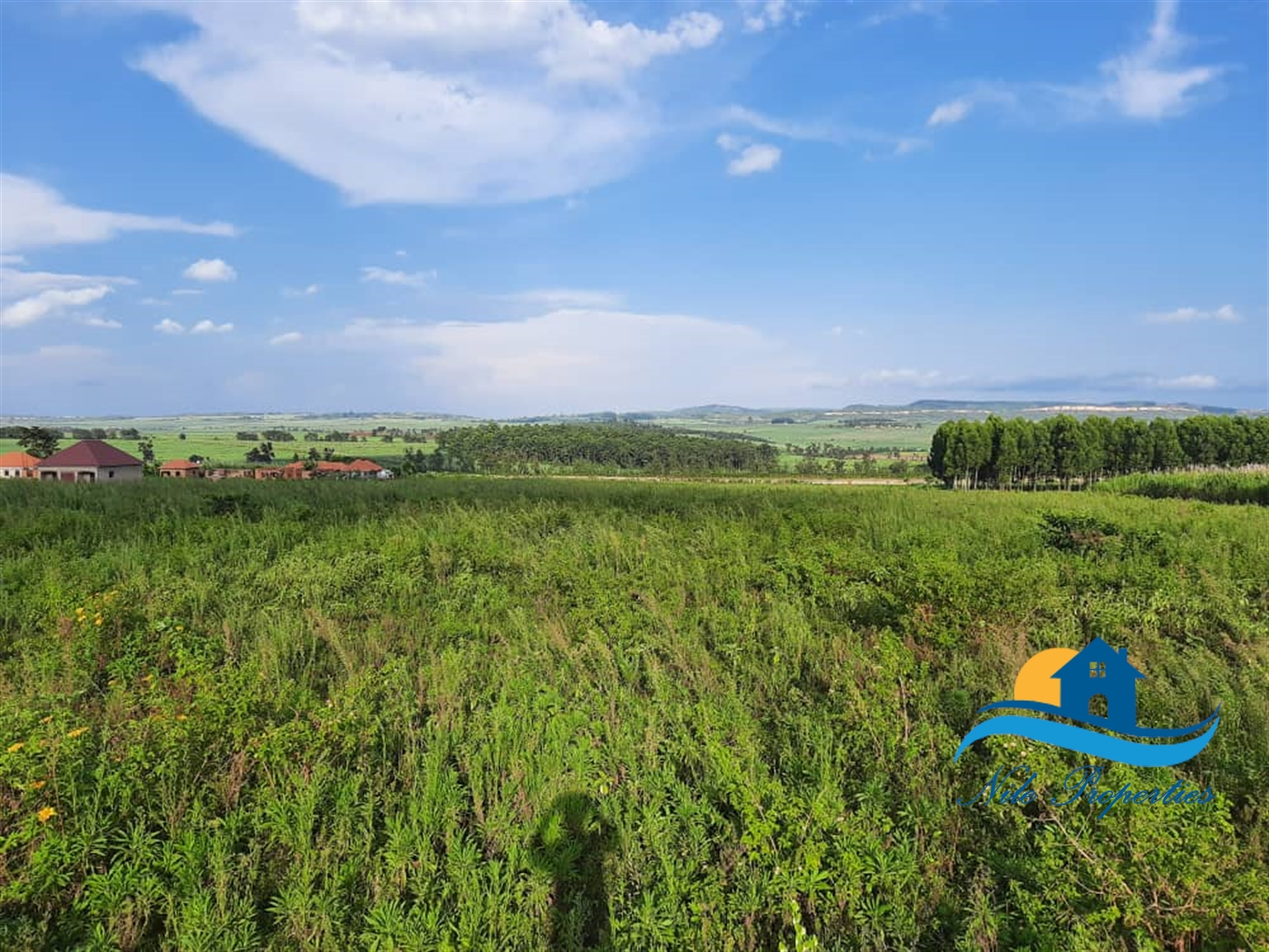 Multi Purpose Land for sale in Wairaka Jinja