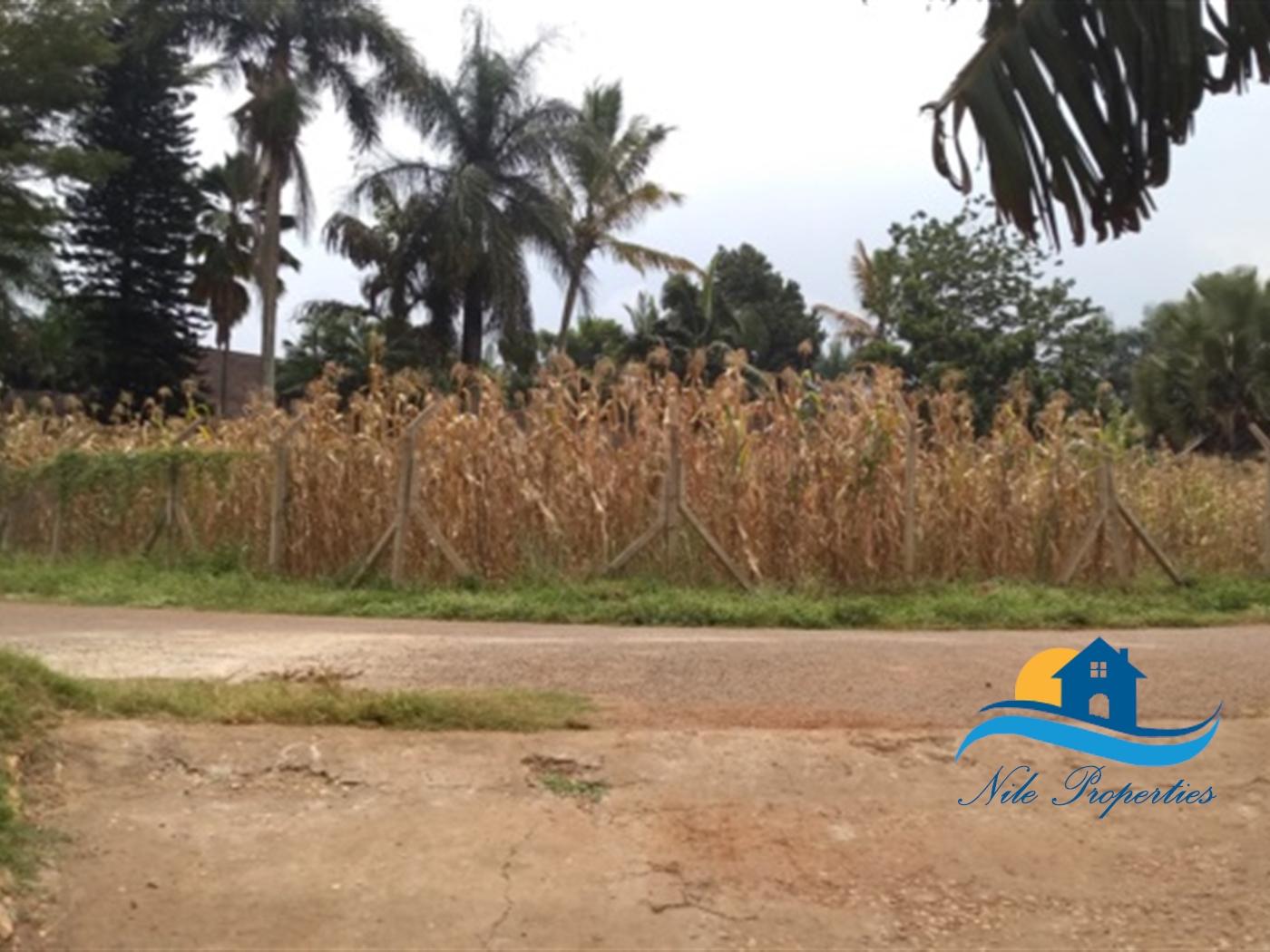 Multi Purpose Land for sale in Kiira Jinja