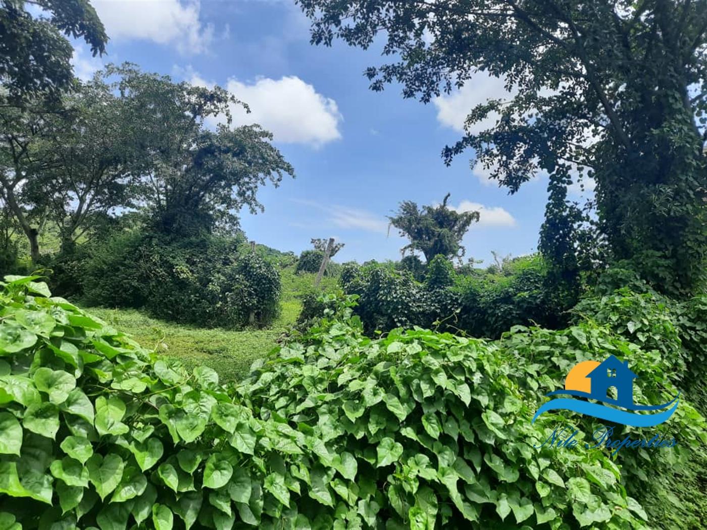 Multipurpose Land for sale in Njeru Jinja