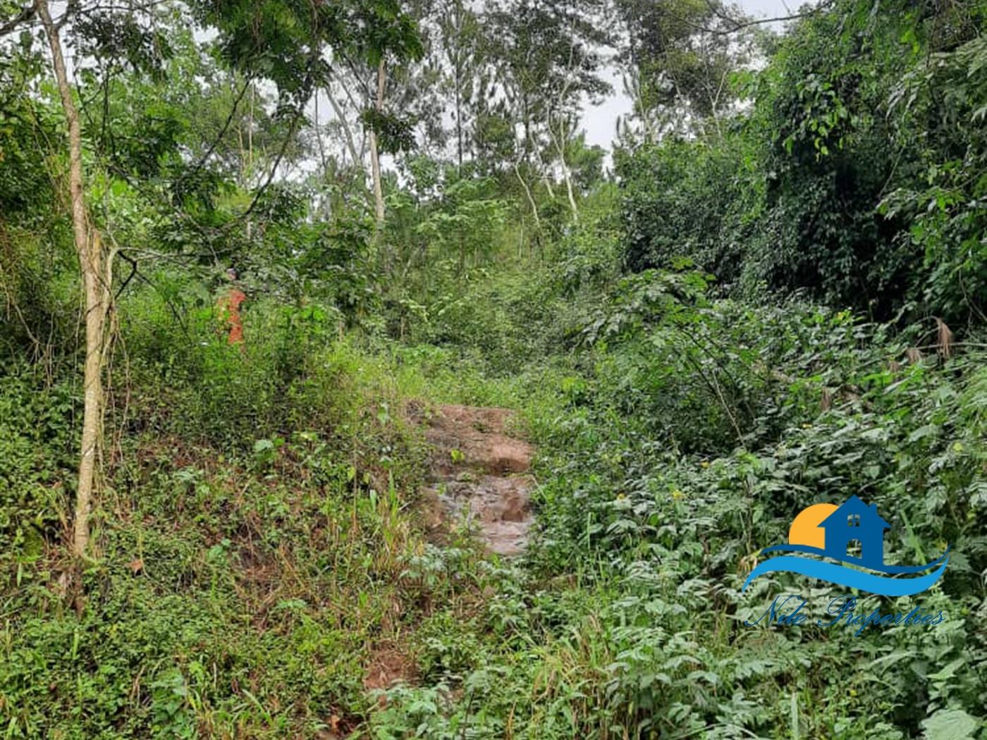 Multipurpose Land for sale in Kibibi Jinja