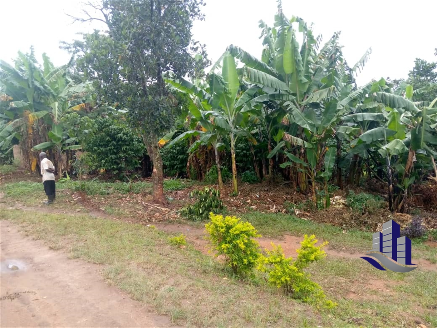 Multi Purpose Land for sale in Bombo Luwero