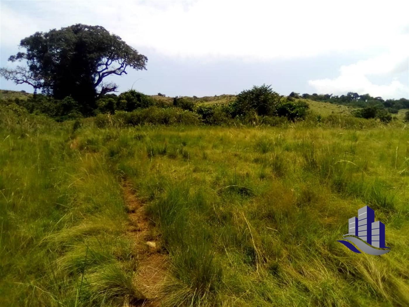 Multipurpose Land for sale in Muyubwe Buyikwe