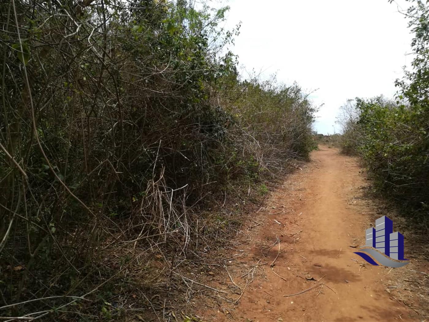 Multipurpose Land for sale in Nakyessa Kayunga