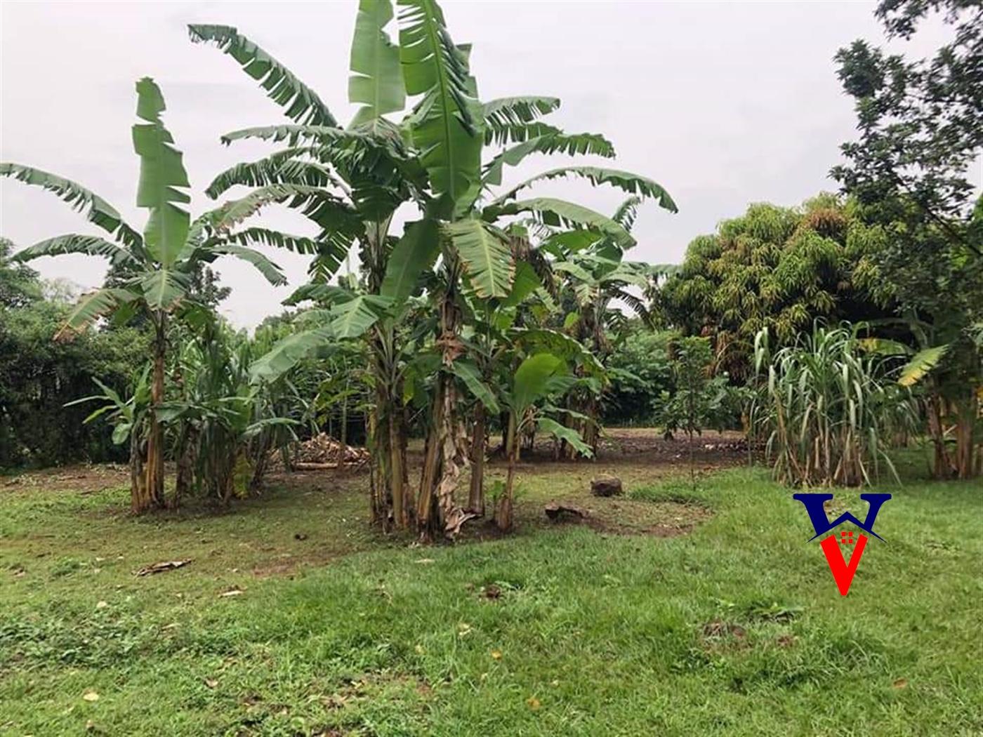 Residential Land for sale in Nile Jinja