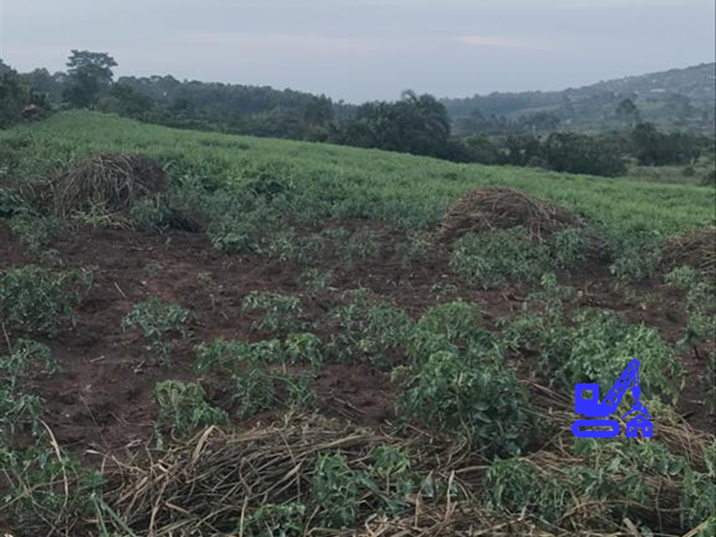 Multipurpose Land for sale in Maya Masaka