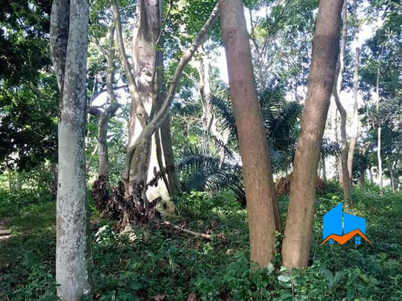 Multi Purpose Land for sale in Kawuku Wakiso