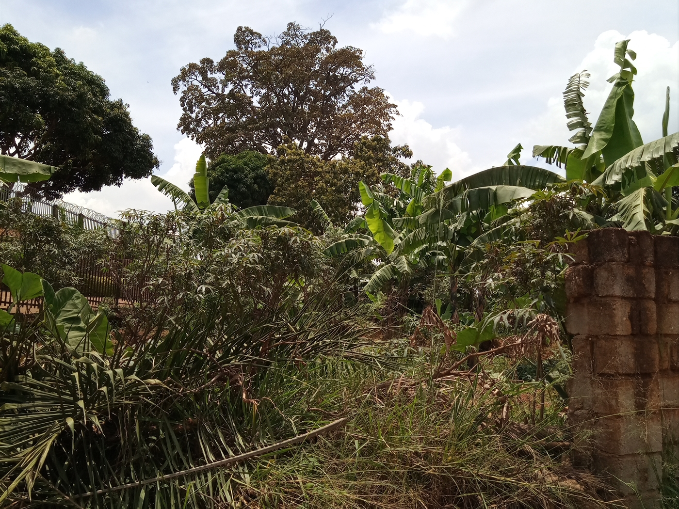 Residential Land for sale in Mankidye Kampala
