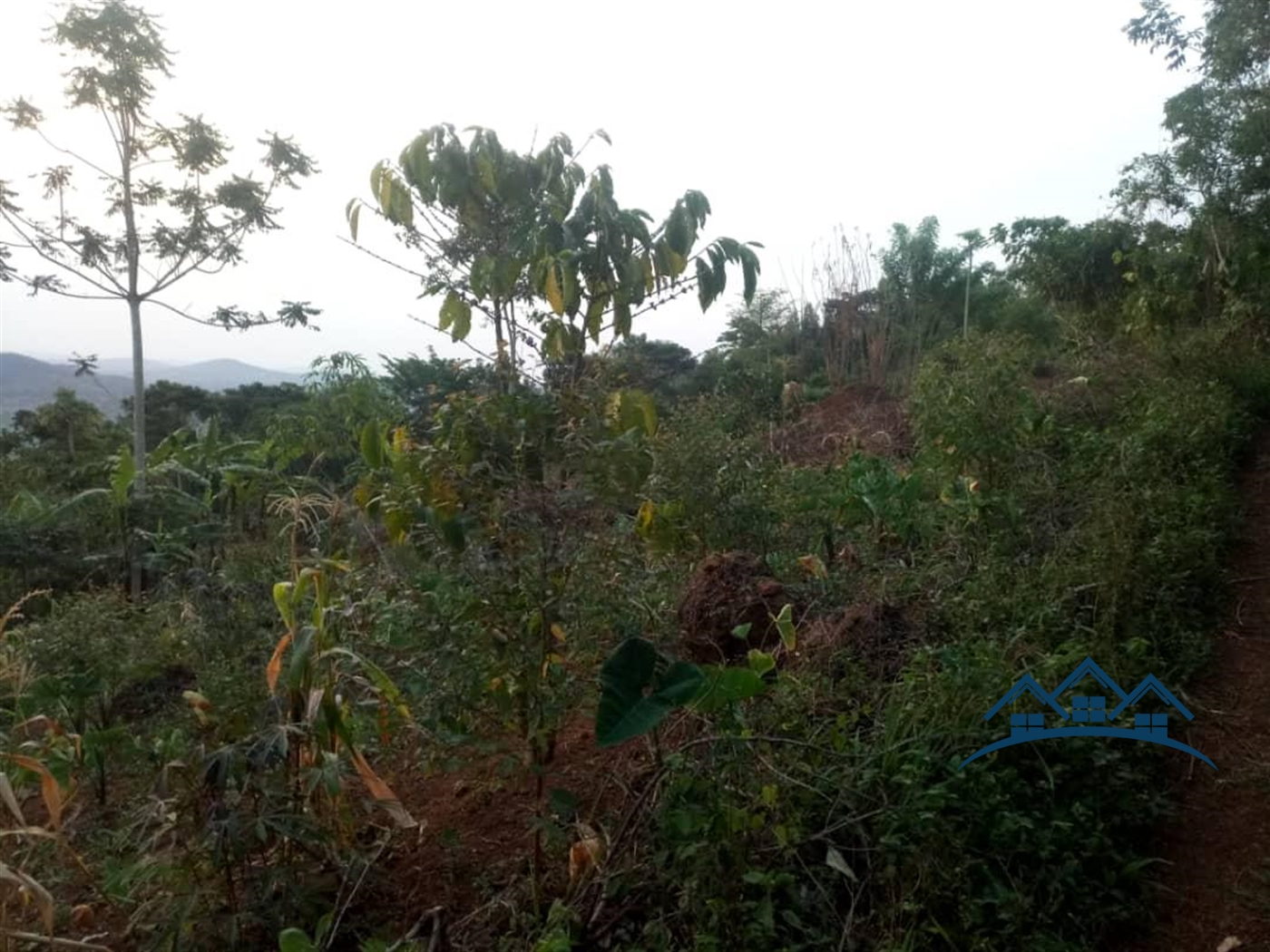Multi Purpose Land for sale in Seeta Butambala