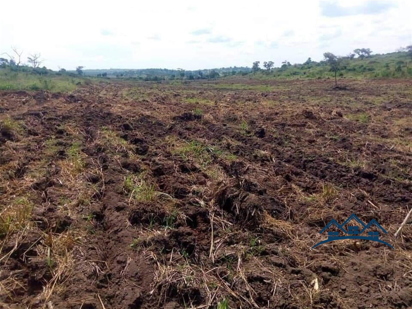 Agricultural Land for sale in Kalonga Mubende