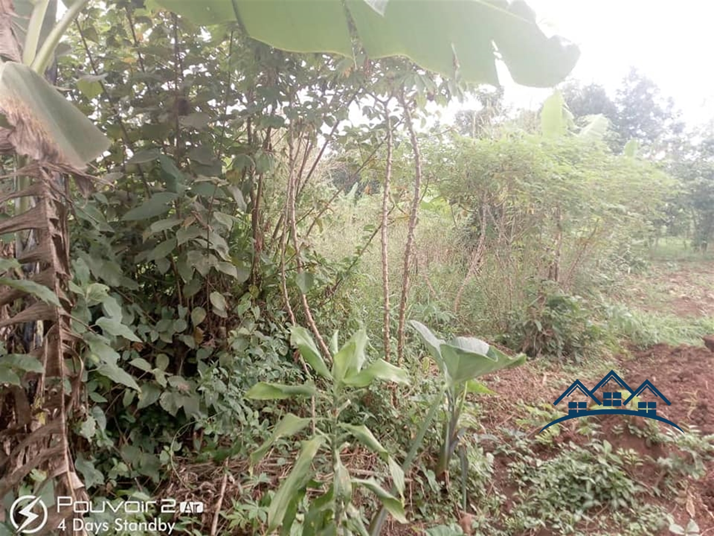 Agricultural Land for sale in Nyibwa Luwero