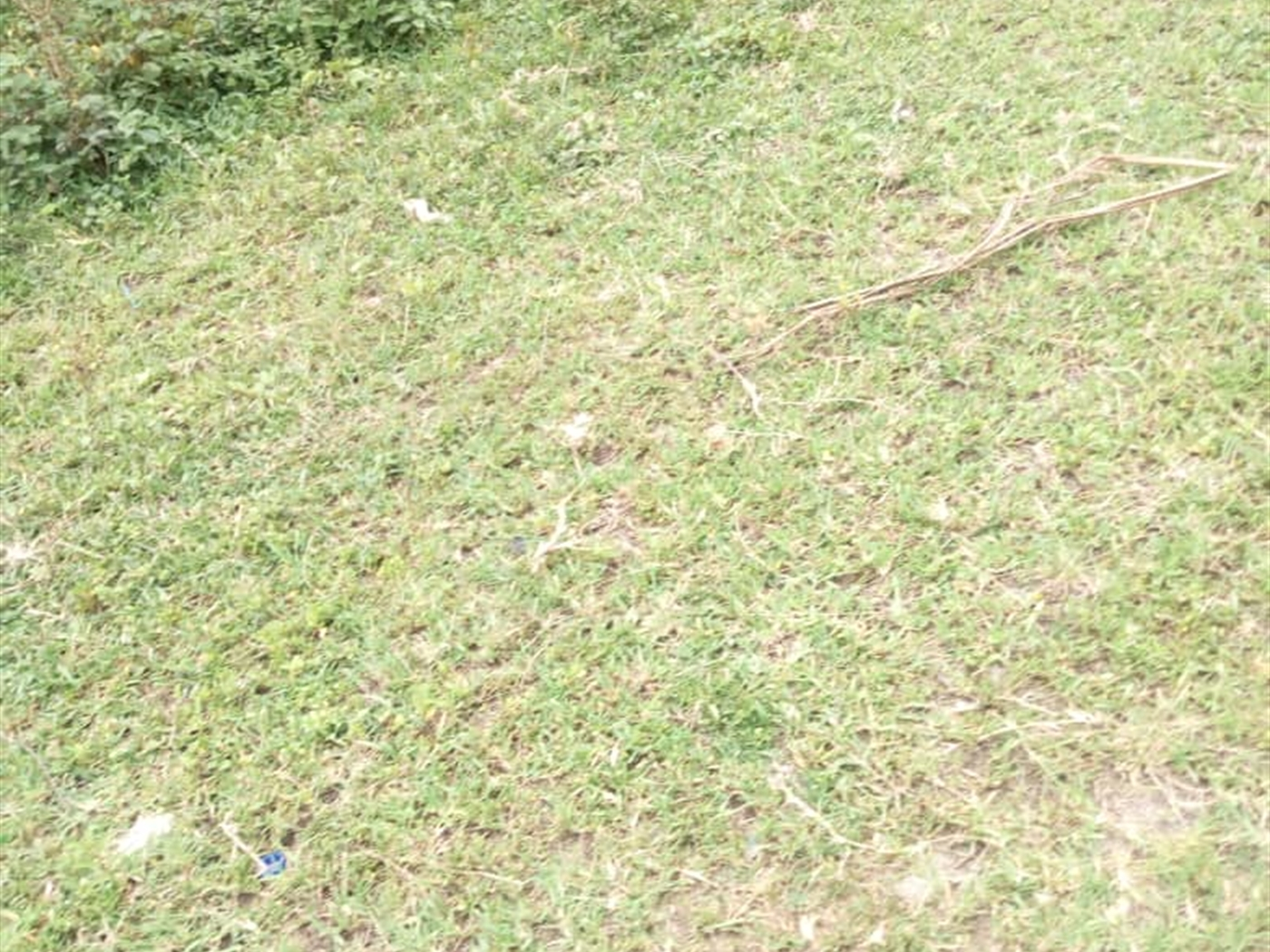 Residential Land for sale in Municipality Kasese