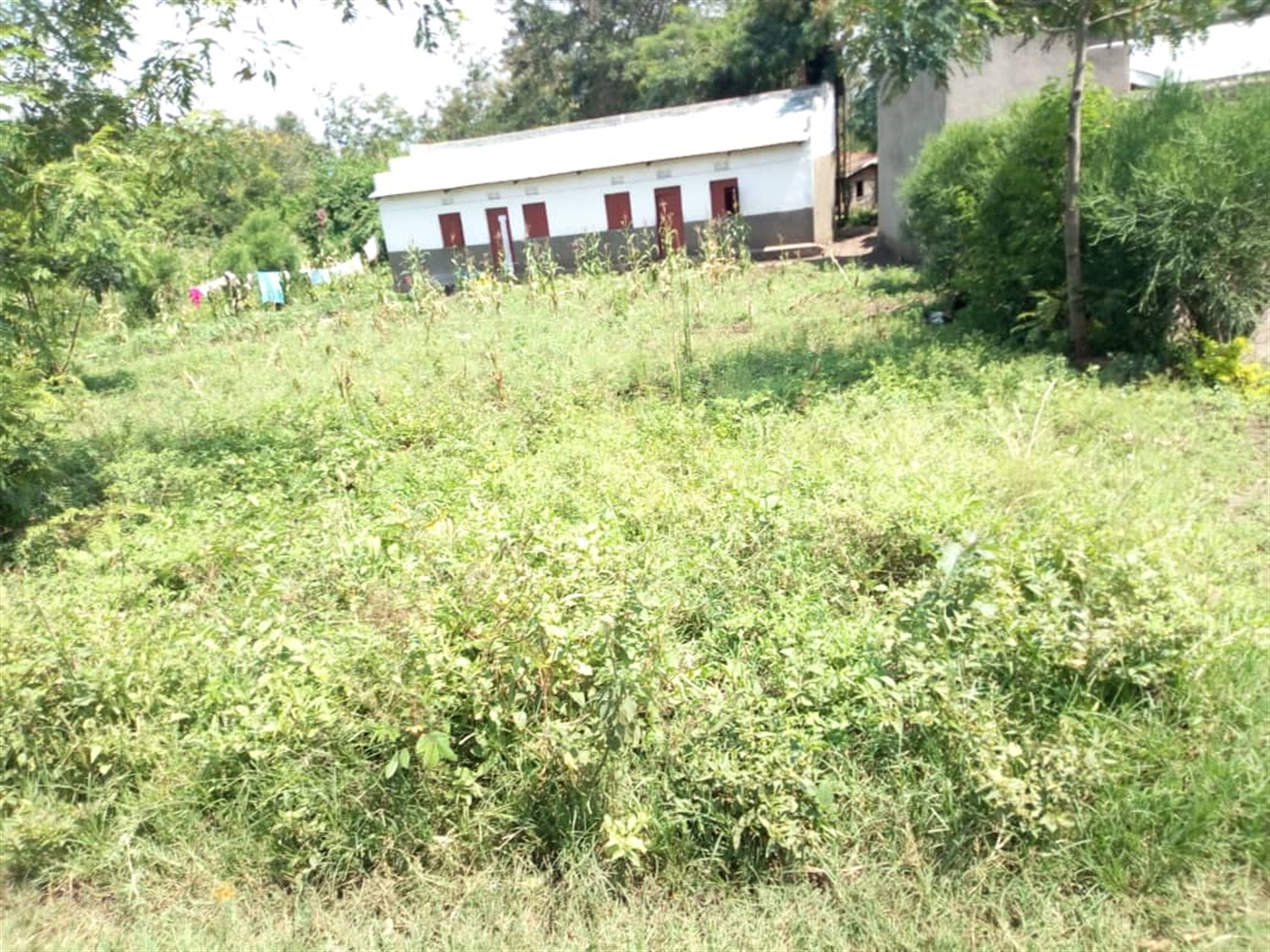 Residential Land for sale in Kiharimu Kasese