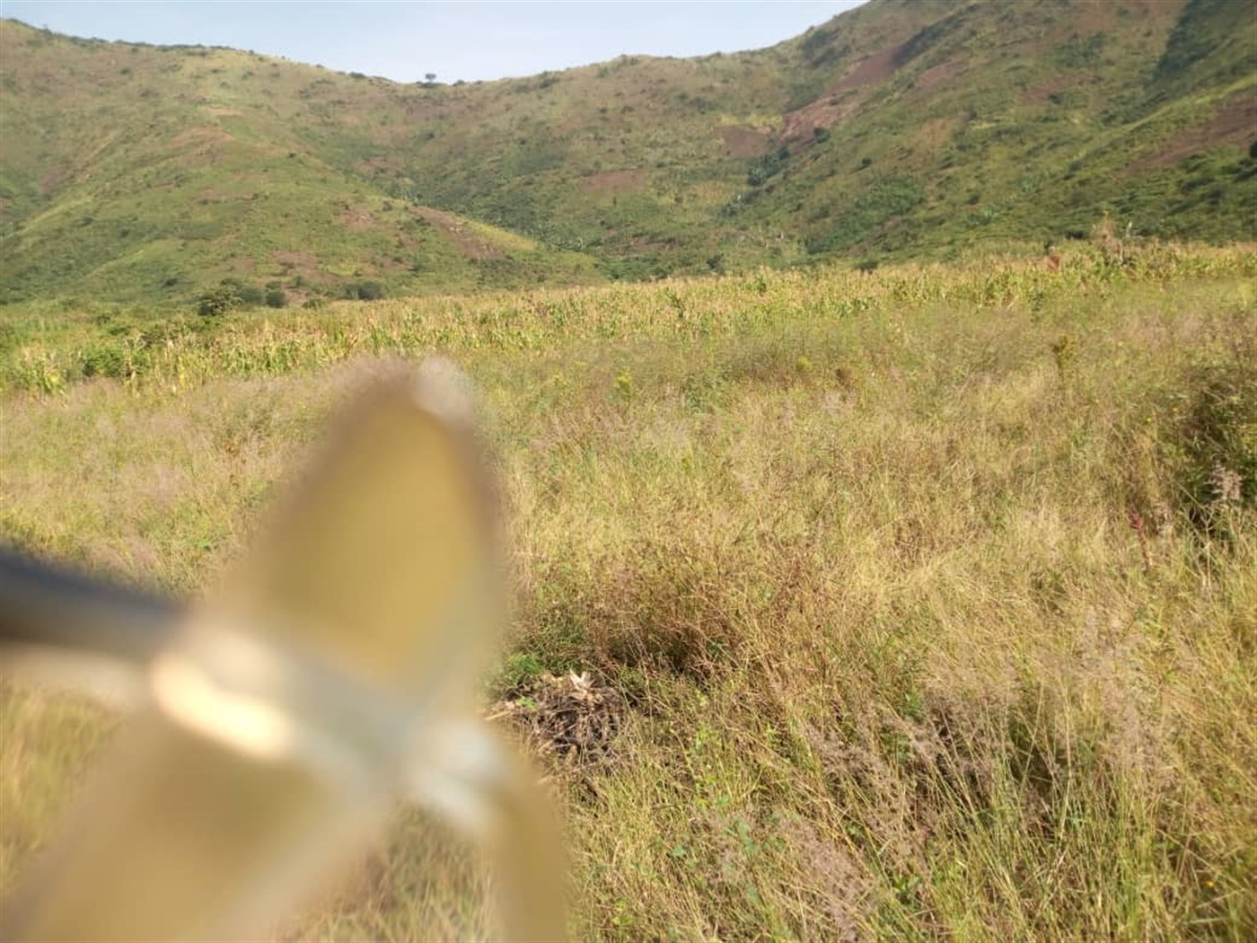Agricultural Land for sale in Rukoki Kasese
