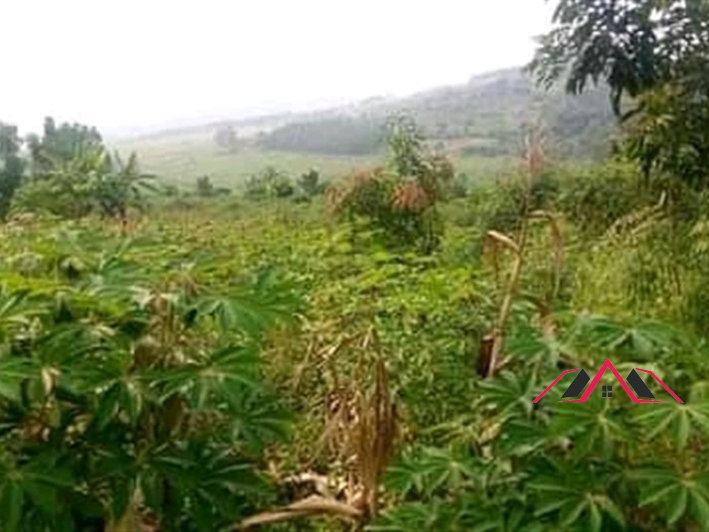 Residential Land for sale in Mukono Wakiso