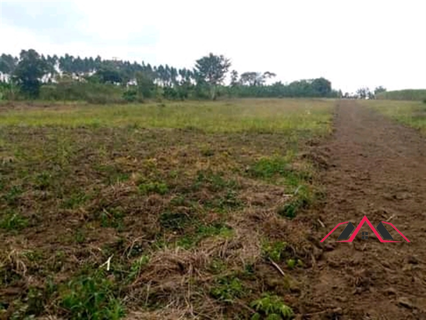 Residential Land for sale in Nakifuma Mukono