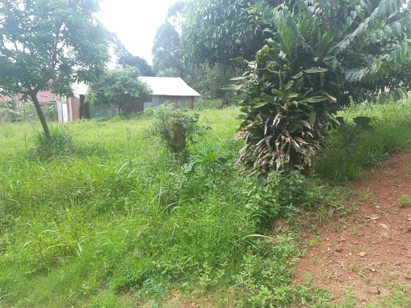 Residential Land for sale in Bugujju Mukono
